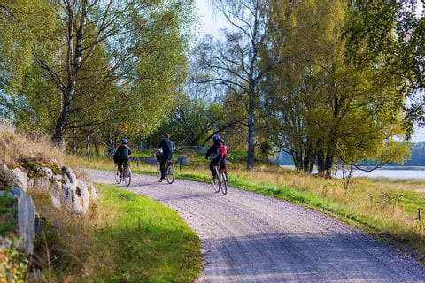 Cycling trail in Sweden