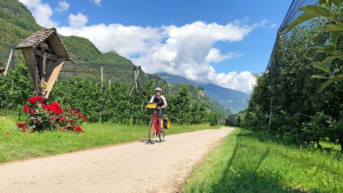 Radler zwischen den Apfelhainen in Südtirol